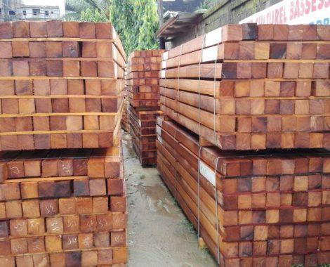 Iroko _ Teak wood_ Pachyloba_ Sapele_ Tali_ Azobe and Padauk_2