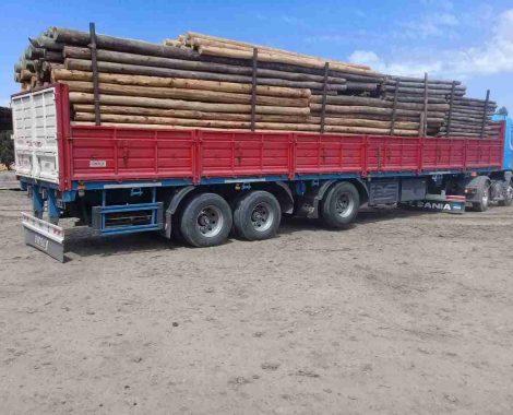Power Poles - Utility Poles - Axe Breaker Hardwood New Zealand (1)
