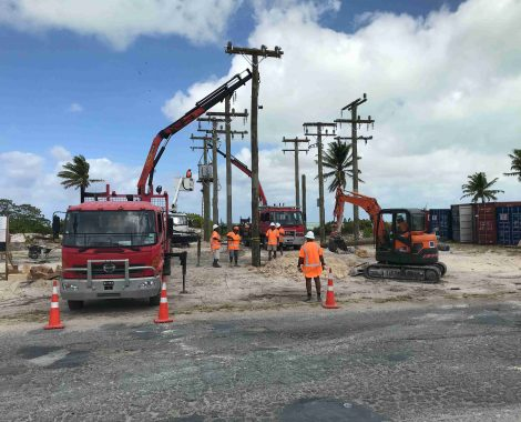 Power Poles - Utility Poles - Axe Breaker Hardwood New Zealand (5)