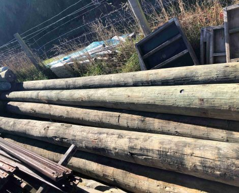 Power Poles - Utility Poles - Axe Breaker Hardwood New Zealand (7)