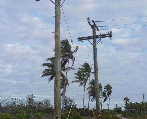 Power Poles - Utility Poles - Axe Breaker Hardwood New Zealand (8)