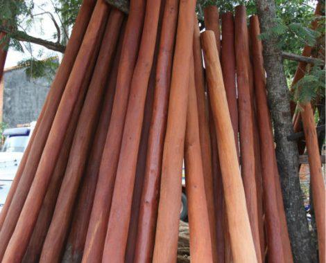 quebracho-colorado-logs